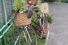 green-cyclist