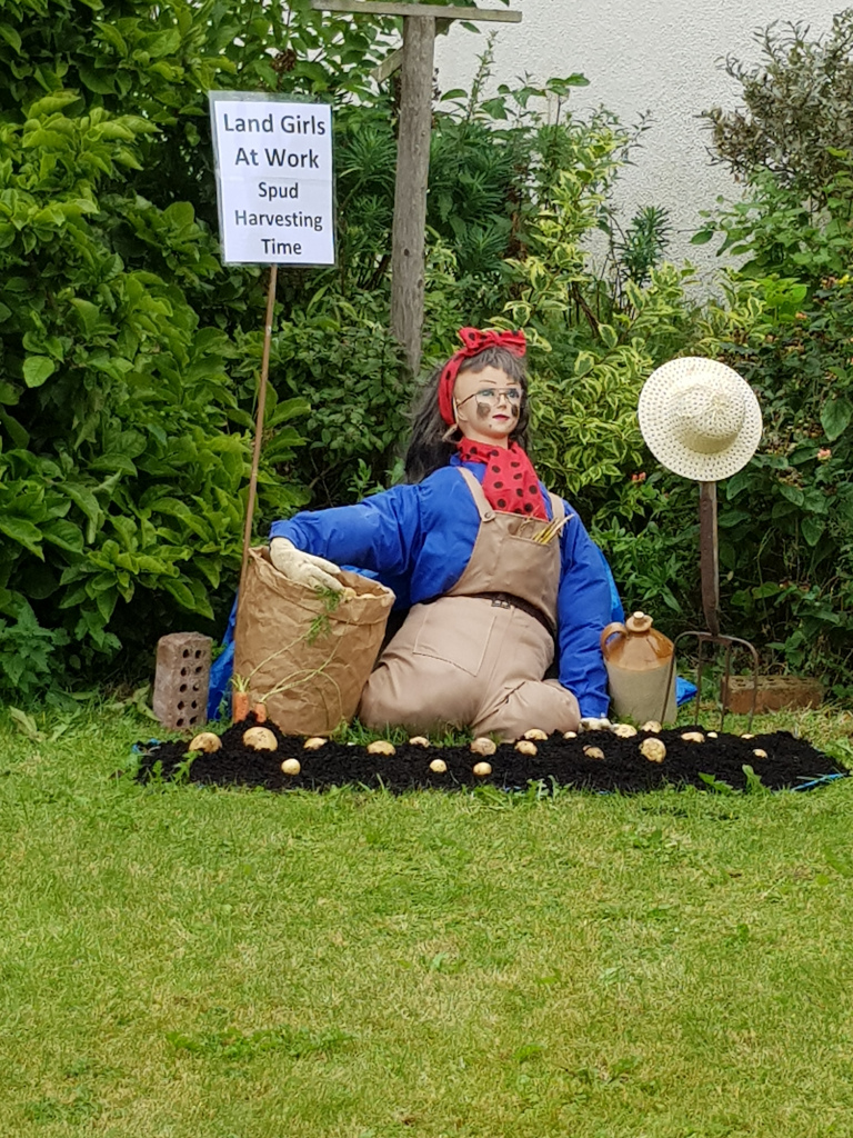 scarecrow of a land girl picking potatoes
